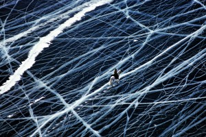 Horse rider crossing frozen lake Baikal, Siberia, Russia. © Matthieu Paley